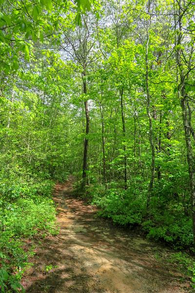 Deer Lake Lodge Trail -- 2,250'