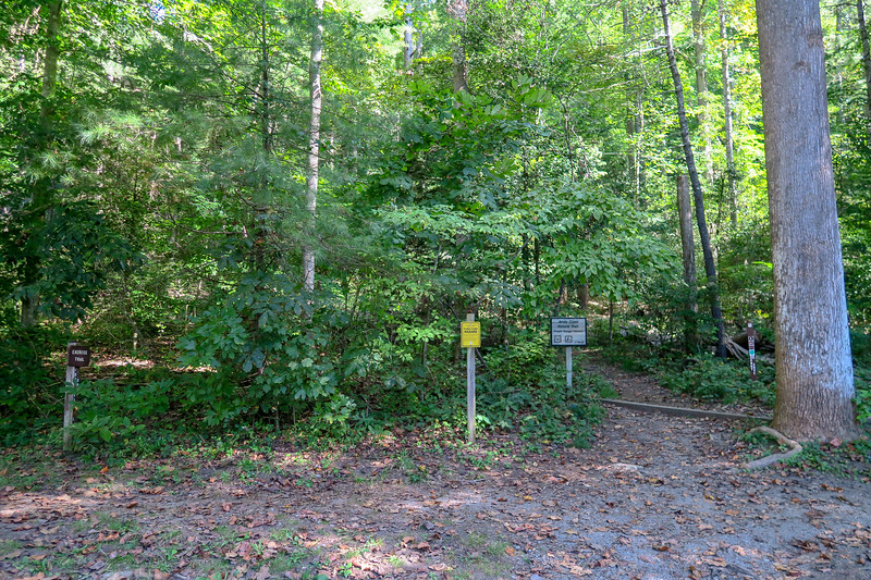 Pisgah Ranger Station/Visitor Center Trailhead (Andy Cove Nature & Exercise Loop Trails)