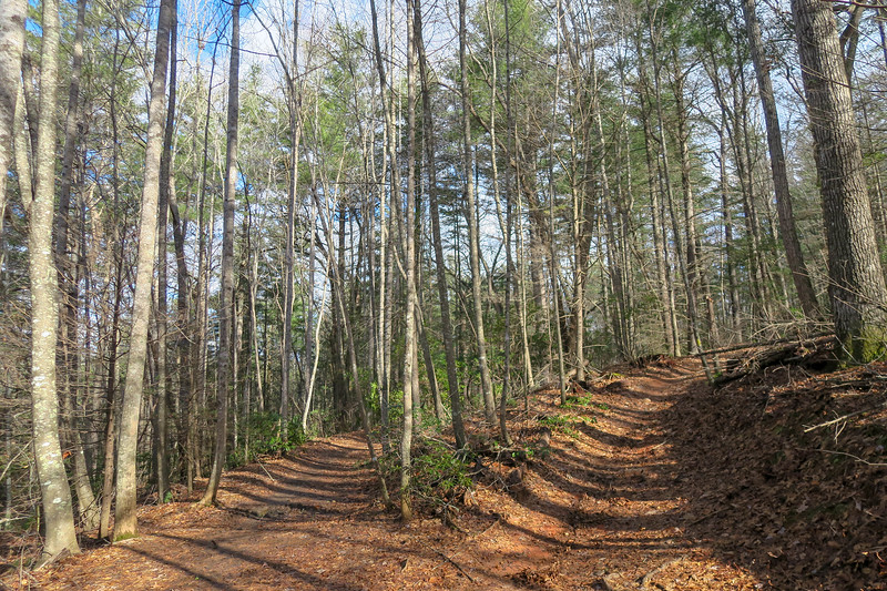 Explorer Loop/Explorer Loop Connector Trail Upper Junction -- 2,390'