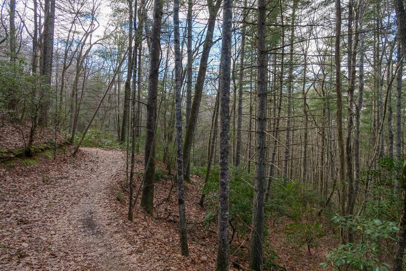 Explorer Loop Trail -- 2,410'