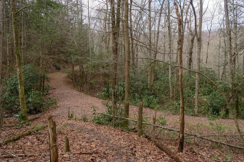 Explorer Loop Trail/F.R. 479H Upper Junction -- 2,430'