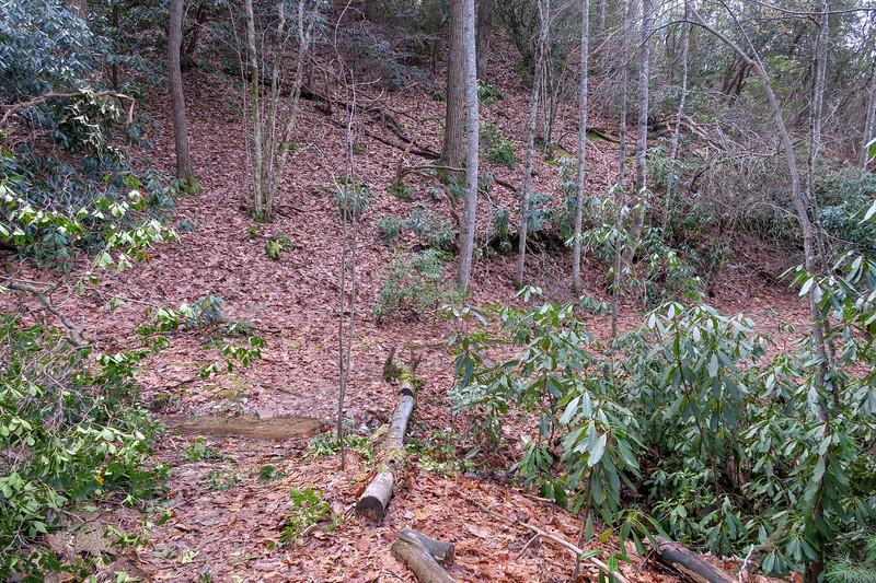 Explorer Loop Trail -- 2,500'