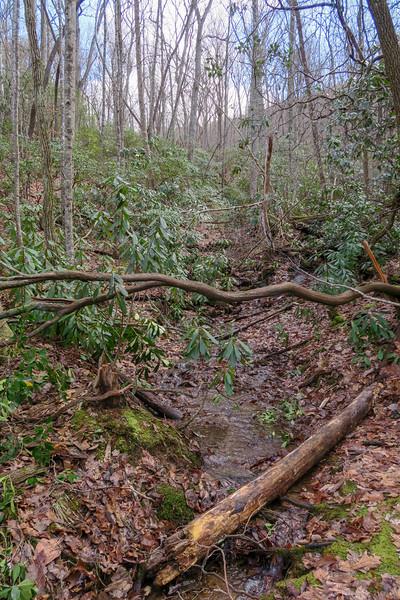 Explorer Loop Trail -- 2,520'