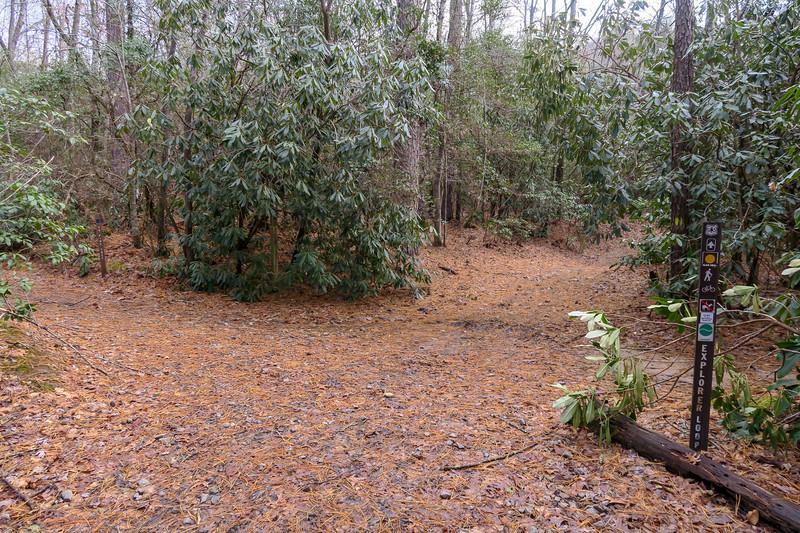 Explorer Loop/Pine Tree Connector Trail Junction -- 2,230'
