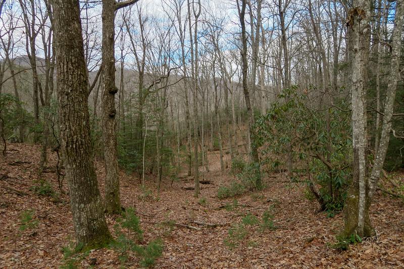 Explorer Loop Trail -- 2,550'