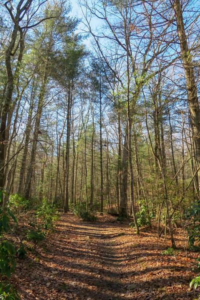 Explorer Loop Trail -- 2,320'