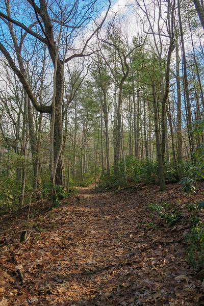Explorer Loop Trail -- 2,440'