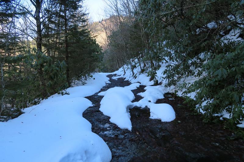 Flat Laurel Creek Trail - 5,000'