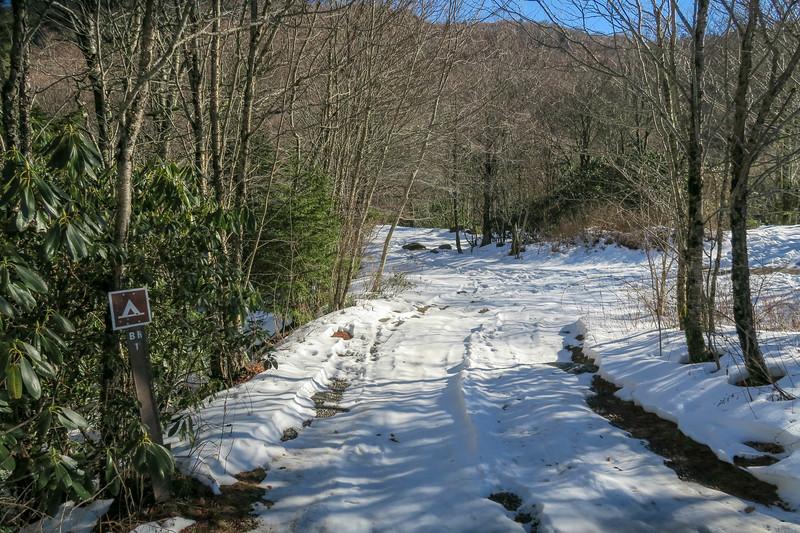 Flat Laurel Creek Trailhead @ NC-215 - 5,040'