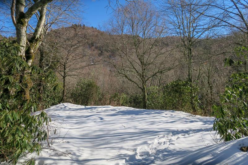 Flat Laurel Creek Trail - 5,020'