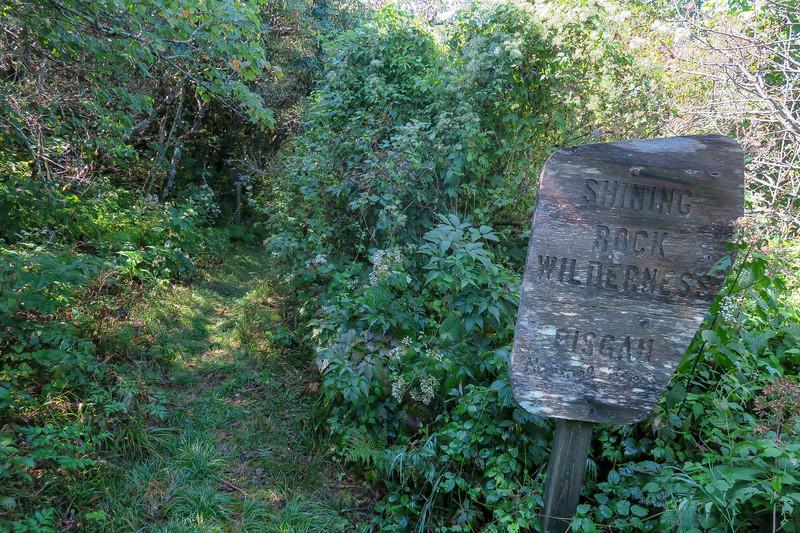 Fork Mountain Trail -- 5,720'