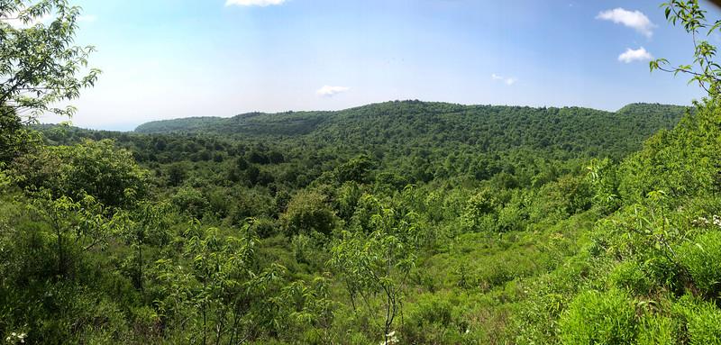 Graveyard Ridge Trail -- 5,270'