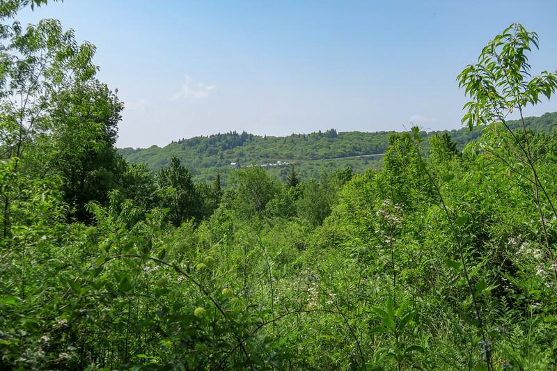 Graveyard Ridge Trail -- 5,210'