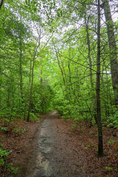 Hardtimes Connector Trail -- 2,220'