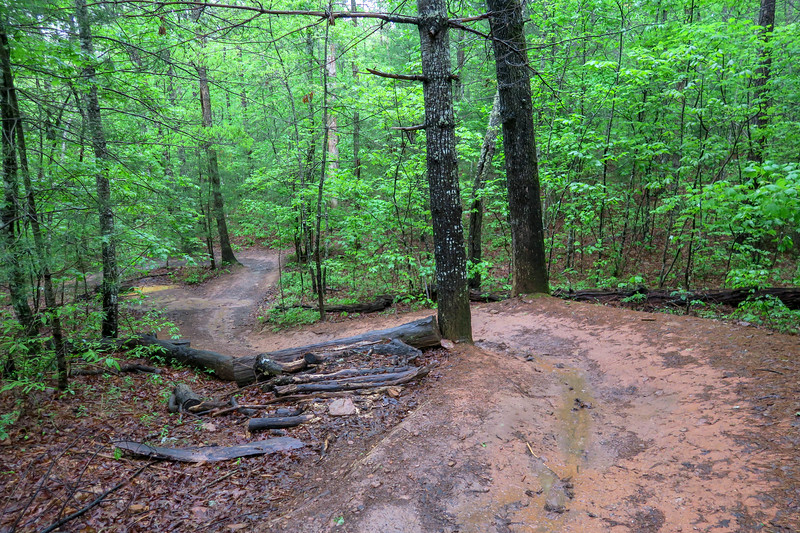 Hardtimes Connector Trail -- 2,200'