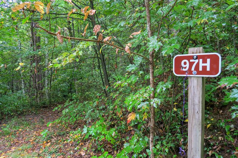 Haywood Gap Trailhead (F.R. 97/F.R. 97H) -- 3,640'