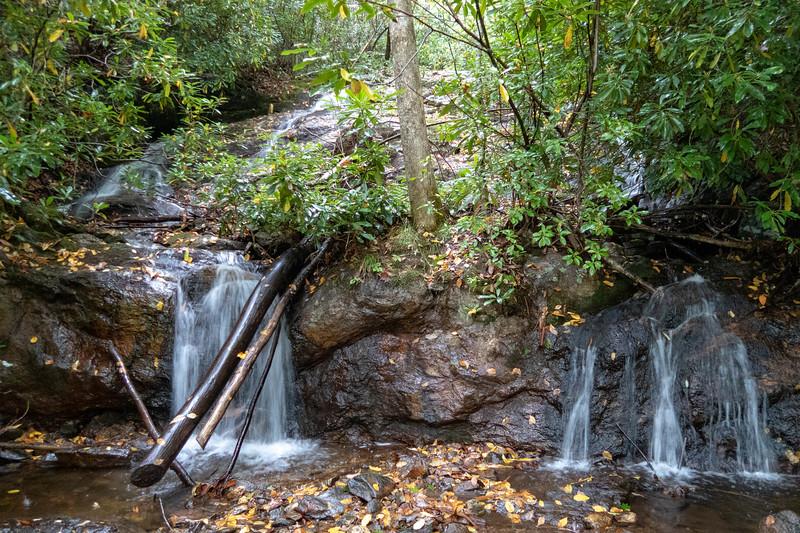 Haywood Gap Trail @ Little Beartrap Branch -- 3,640'
