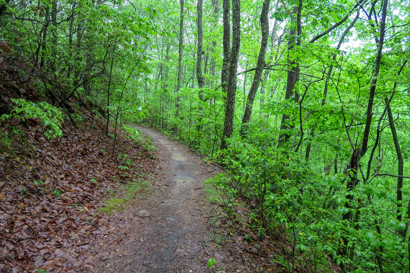 Ingles Field Gap Trail -- 2,860'