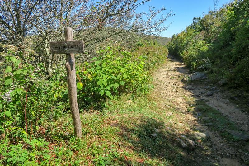 Ivestor Gap/Fork Mountain Trail Junction -- 5,730'