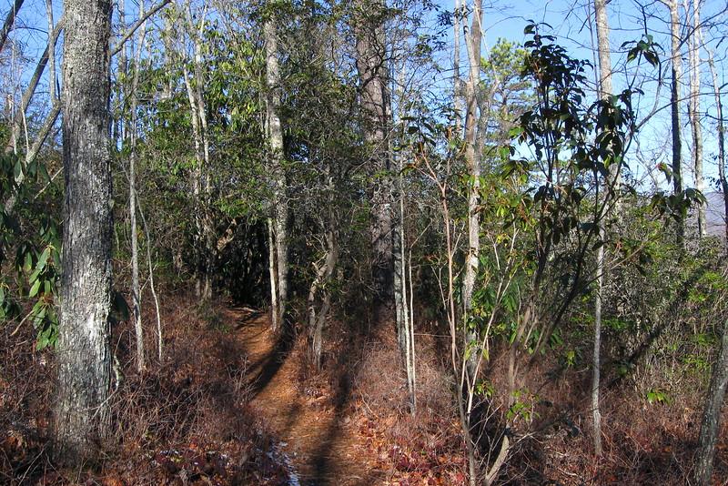 John Rock Trail -- 2,980'