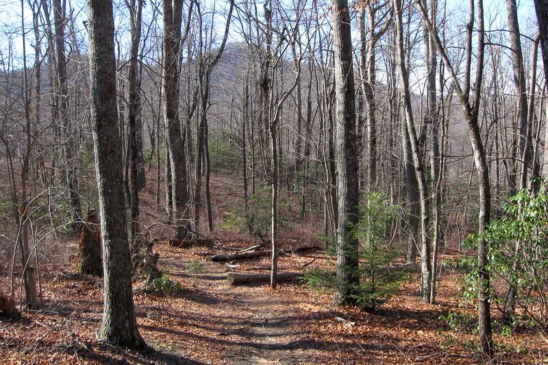 John Rock Trail -- 3,160'