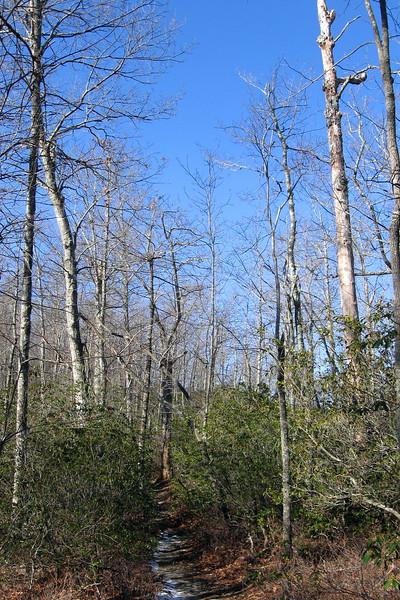 John Rock Trail -- 2,950'