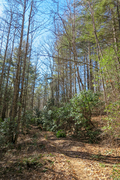 Long Branch Trail -- 2,830'