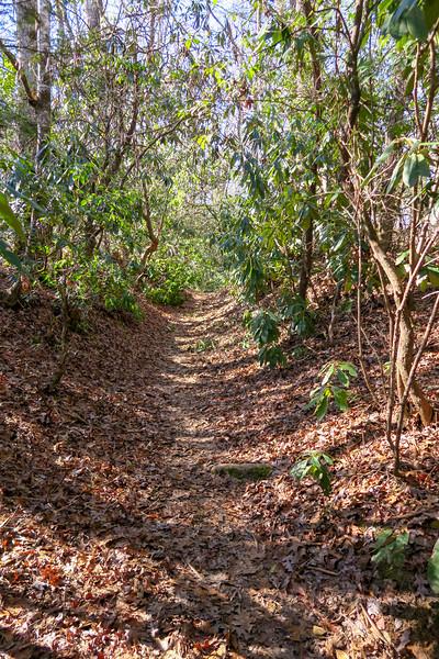 Long Branch Trail -- 2,700'