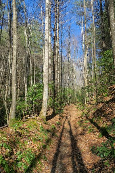 Long Branch Trail -- 2,740'