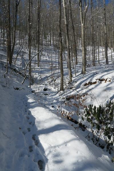 Looking Glass Rock Trail -- 2,400'