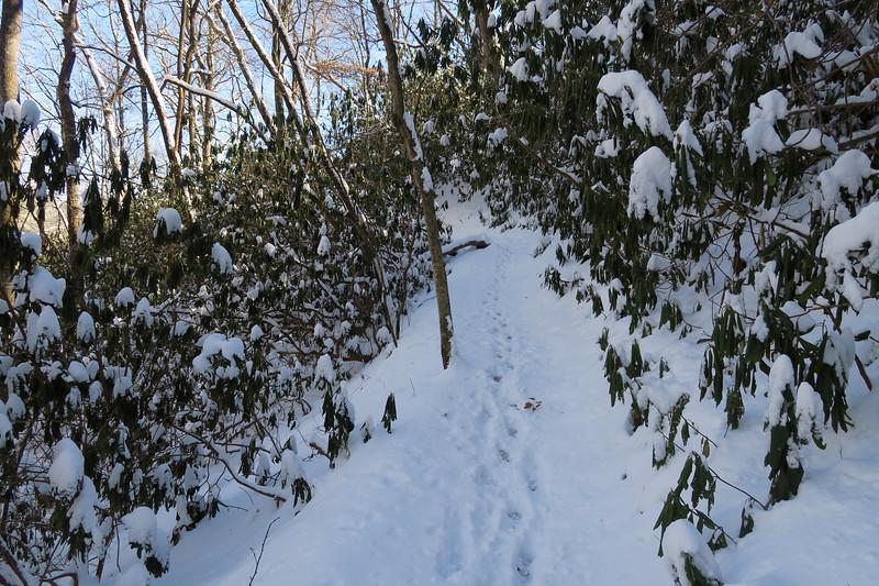 Looking Glass Rock Trail -- 2,700'