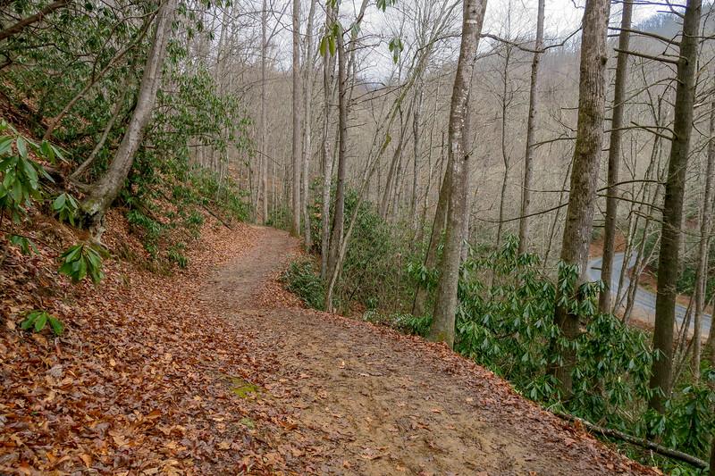 Moore Cove Trail -- 2,450'