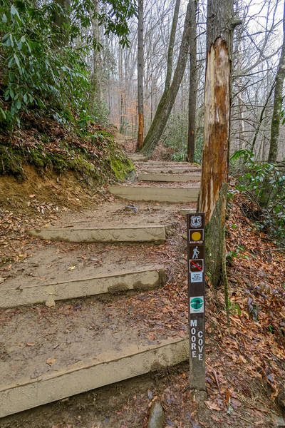 Moore Cove Trail -- 2,430'