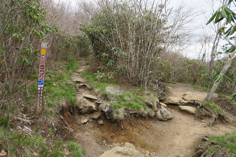 Mountains-to-Sea Access/Second Falls Spur Path Junction