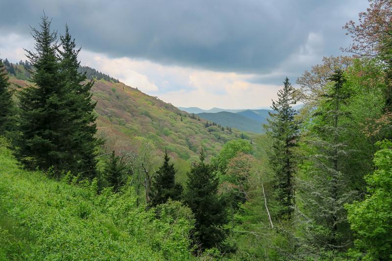 Haywood Gap (Blue Ridge Parkway) -- 5,225'