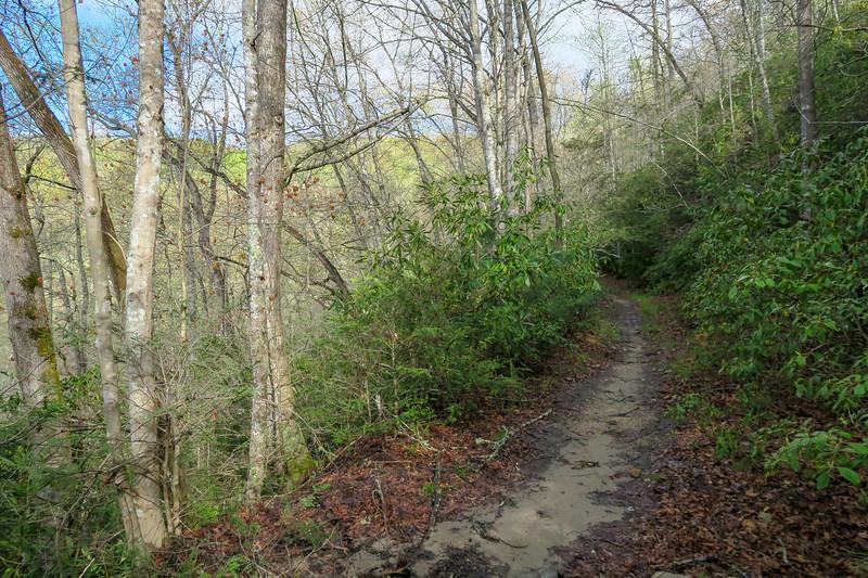 Mullinax Trail -- 2,550'