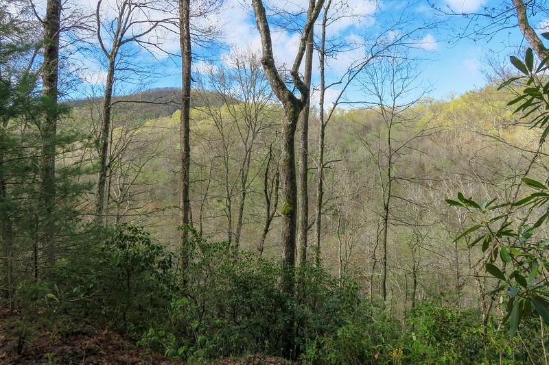Mullinax Trail -- 2,580'