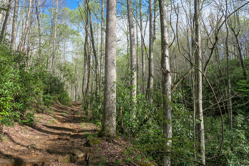 Mullinax Trail -- 2,750'