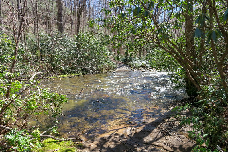 North Mills River Trail (Ford #2) -- 2,360'