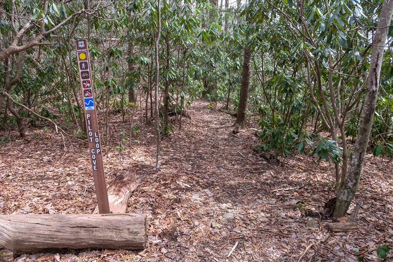 Pilot Cove Loop/Pilot Cove-Slate Rock Trail Upper Junction -- 3,820'