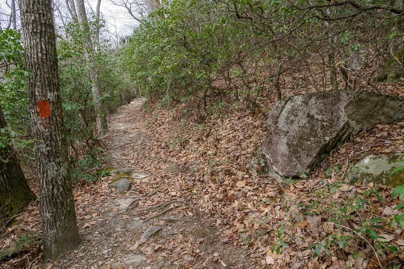 Pilot Rock Trail -- 3,620'