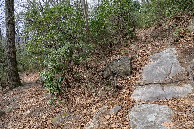 Pilot Rock Trail -- 3,700'