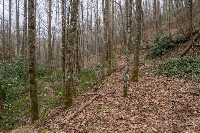 Poundingmill Trail -- 2,560'