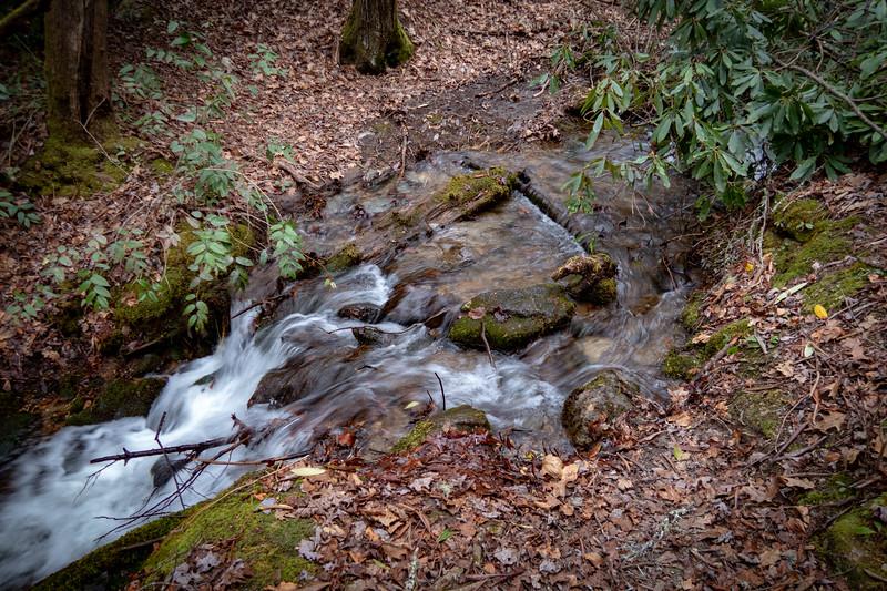 Poundingmill Trail (Crossing #1) -- 2,460'