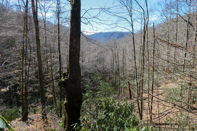 Pressley Cove Trail -- 2,550'