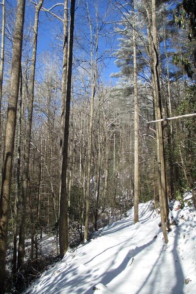 Rainbow Falls Trail -- 2,530'