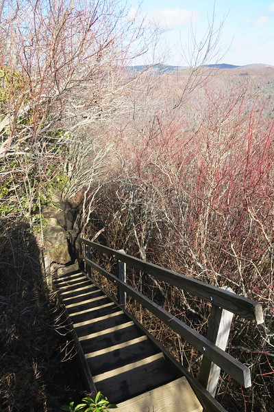 Sam Knob Summit Trail -- 5,900'