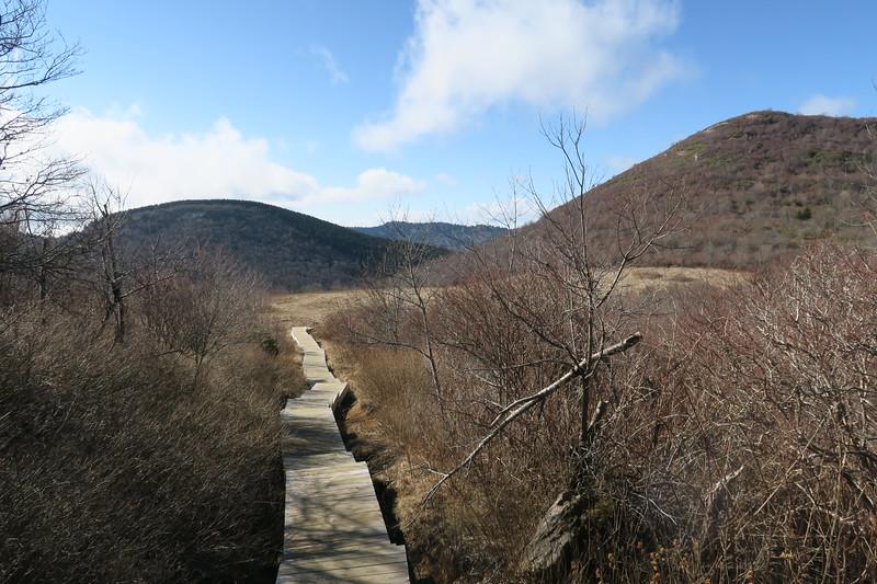 Sam Knob Trail -- 5,720'