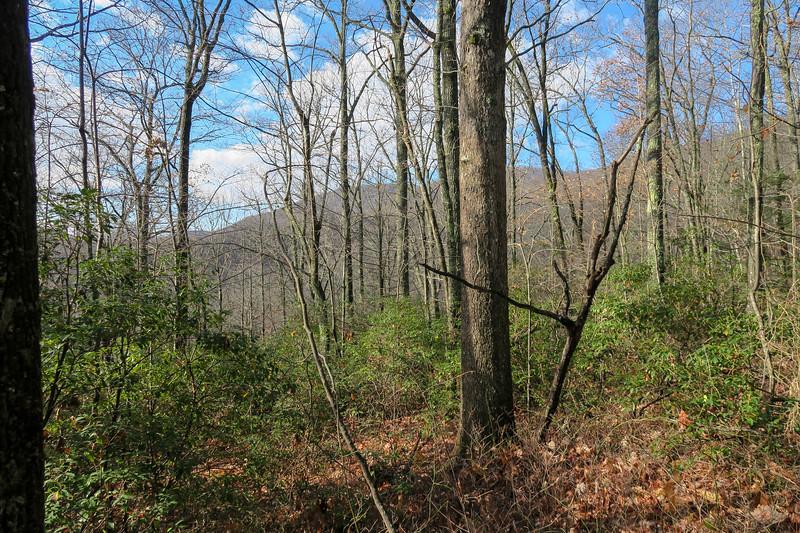 Seniard Ridge Trail -- 3,300'
