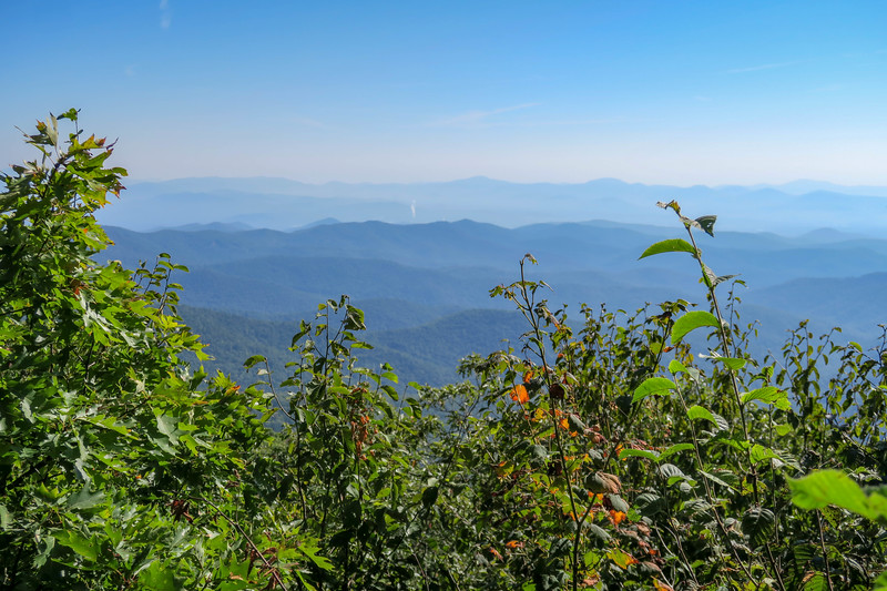 Mountains-to-Sea/Shut-In Trail -- 5,250'